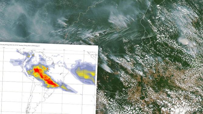 Puszcza Amazońska płonie w zatrważającym tempie